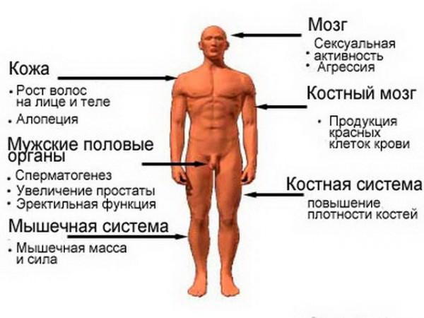 seks-chastnoe-video-vkontakte