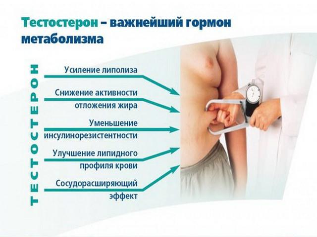 метаболизм спермы в организме женщины-кф2